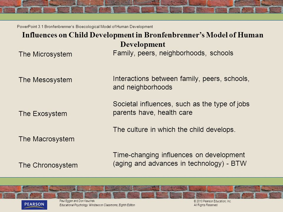 PowerPoint 3.1 Bronfenbrenner's Bioecological Model of Human Development