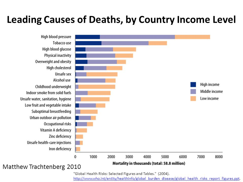 Leading Causes of Deaths, by Country Income Level