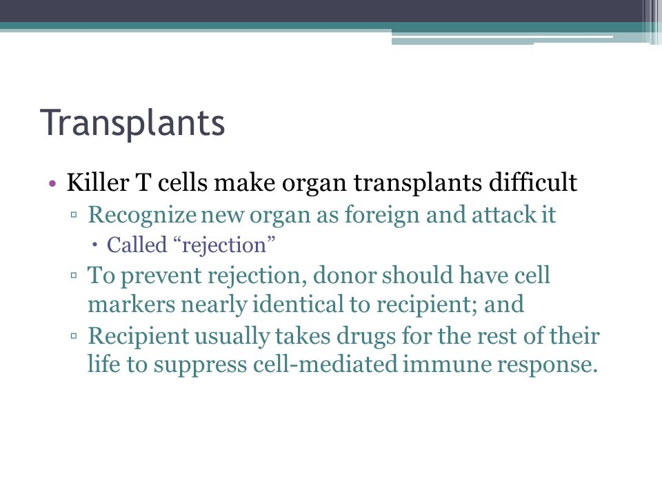 Transplants Killer T cells make organ transplants difficult