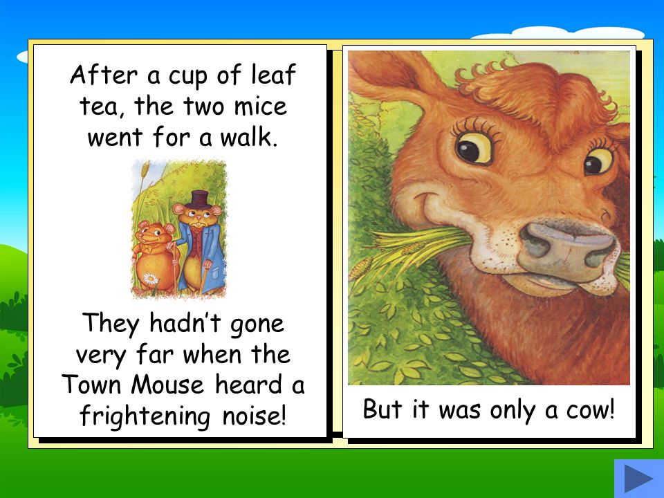After a cup of leaf tea, the two mice went for a walk.