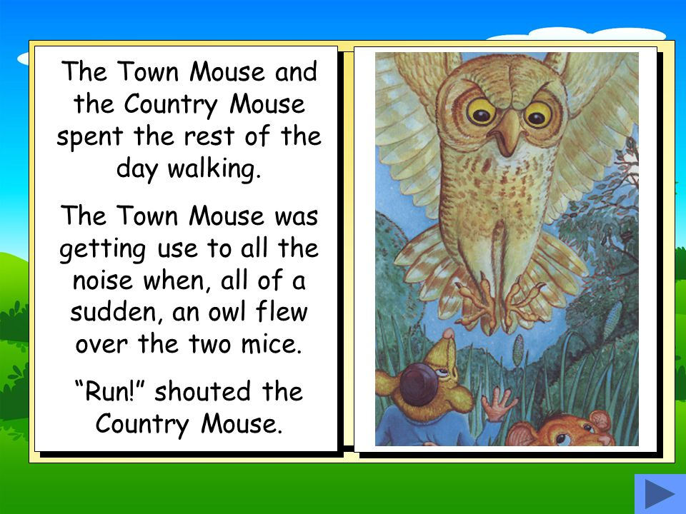 Run! shouted the Country Mouse.