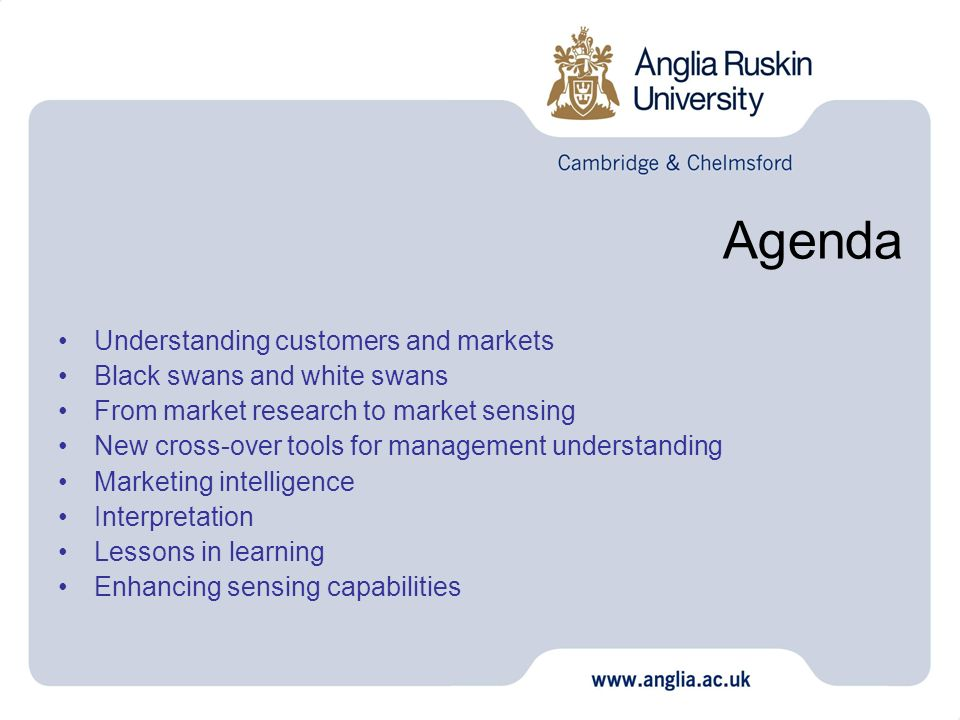 Agenda Understanding customers and markets Black swans and white swans