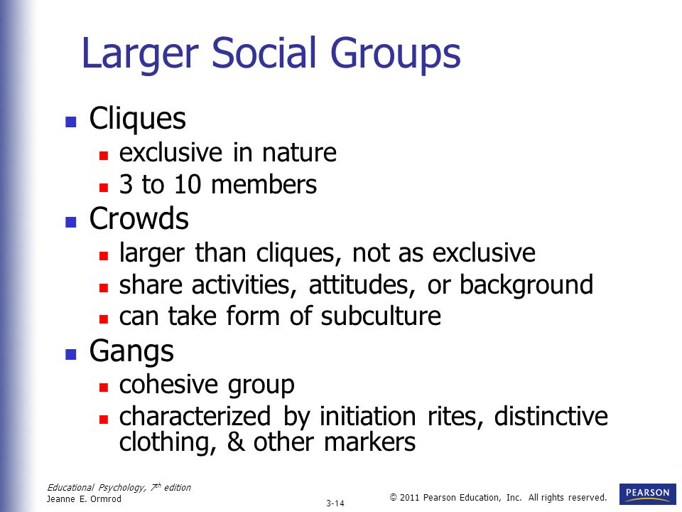 Larger Social Groups Cliques Crowds Gangs exclusive in nature