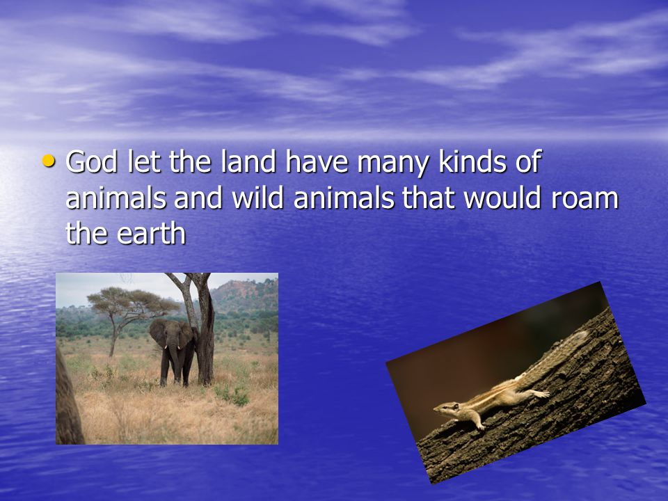 God let the land have many kinds of animals and wild animals that would roam the earth