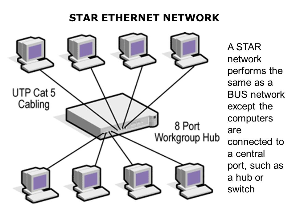 STAR ETHERNET NETWORK A STAR network performs the same as a BUS network except the computers are connected to a central port, such as a hub or switch.
