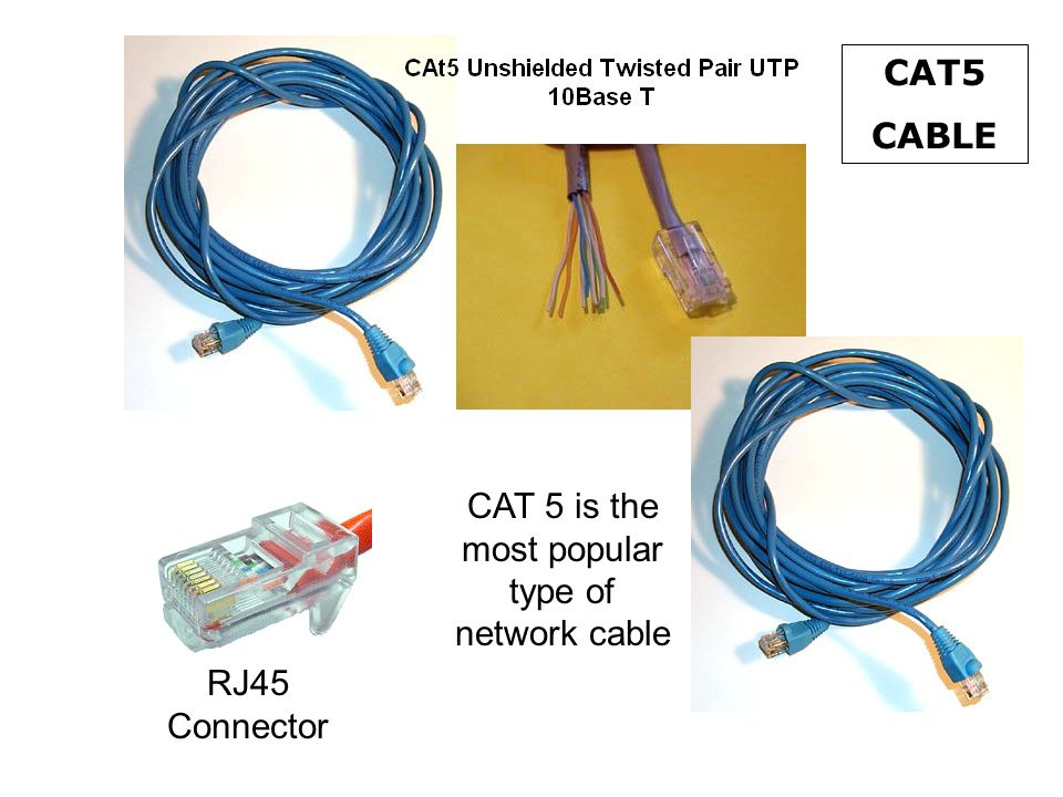 CAT 5 is the most popular type of network cable