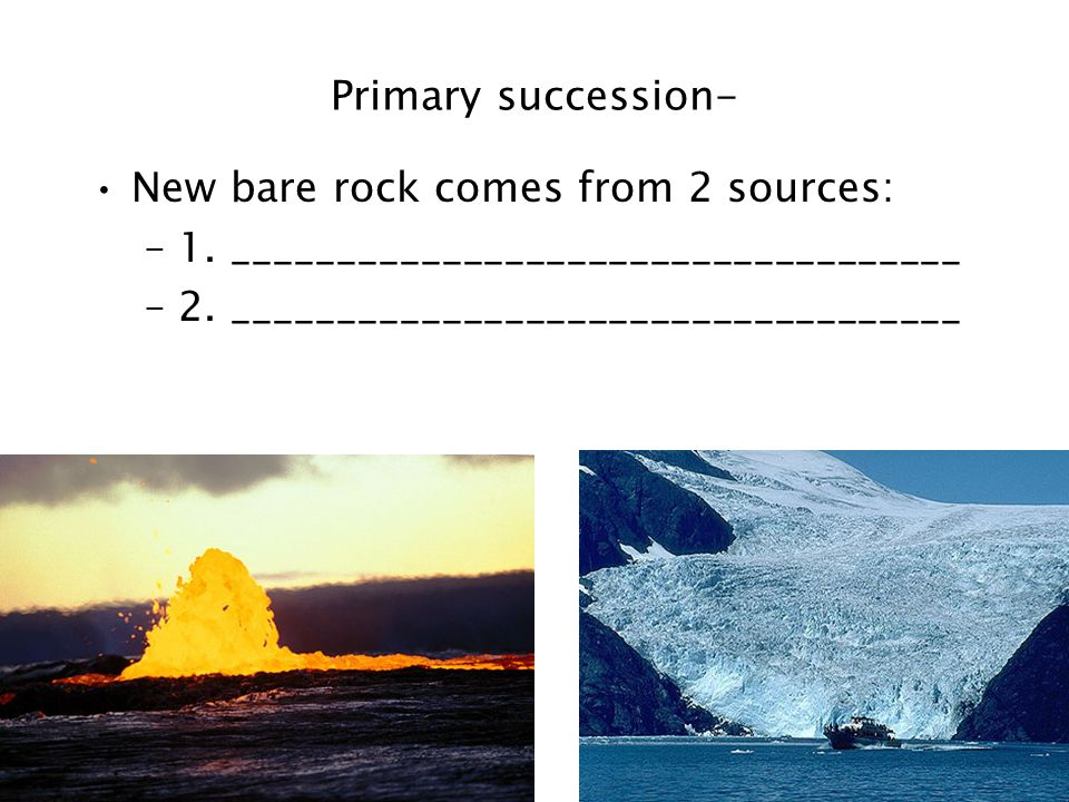 Primary succession- New bare rock comes from 2 sources: 1.