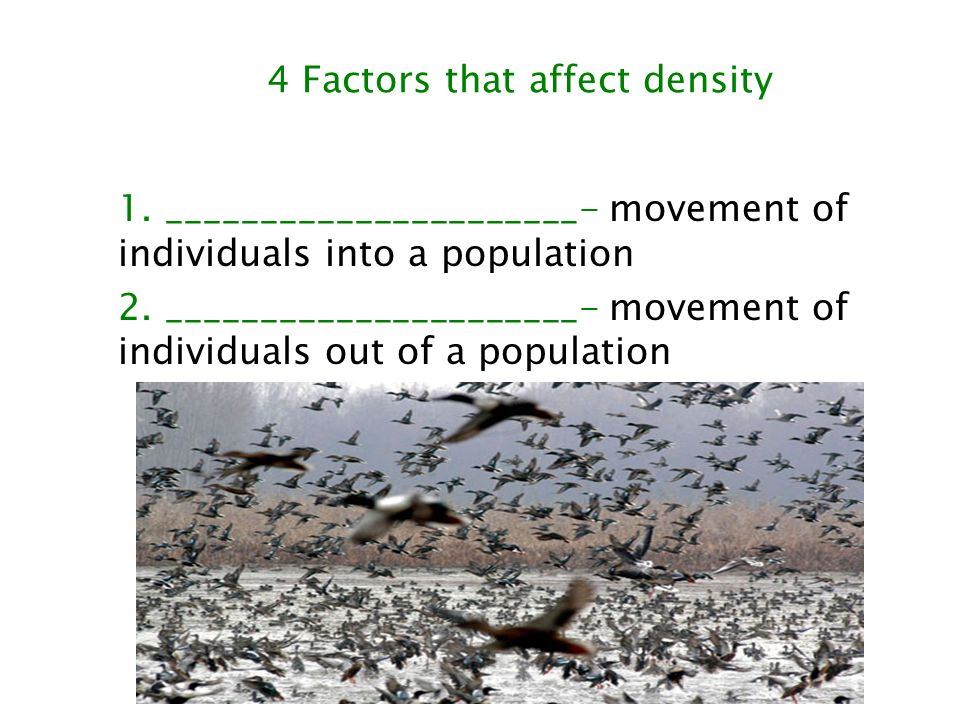 4 Factors that affect density
