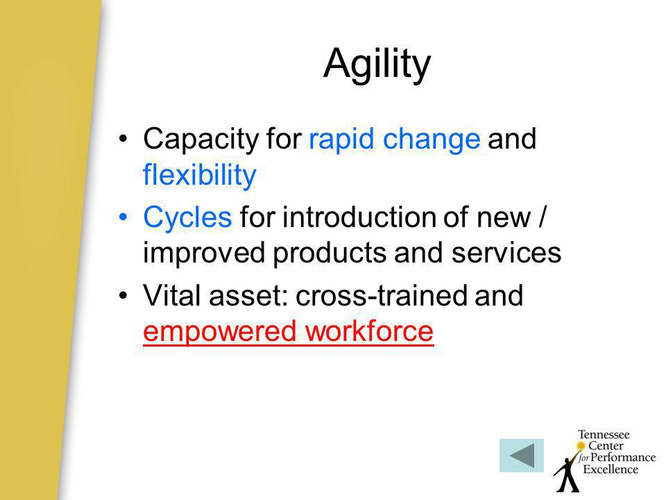 Agility Capacity for rapid change and flexibility