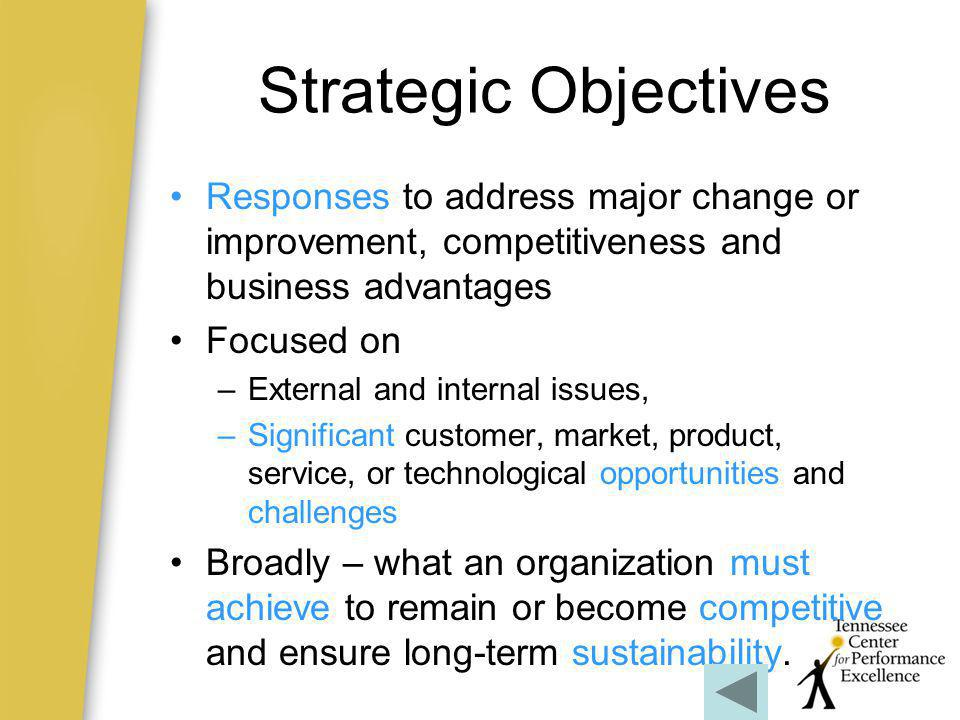 Strategic Objectives Responses to address major change or improvement, competitiveness and business advantages.