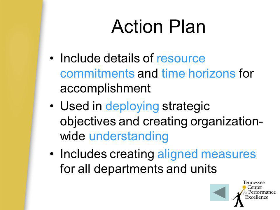 Action Plan Include details of resource commitments and time horizons for accomplishment.