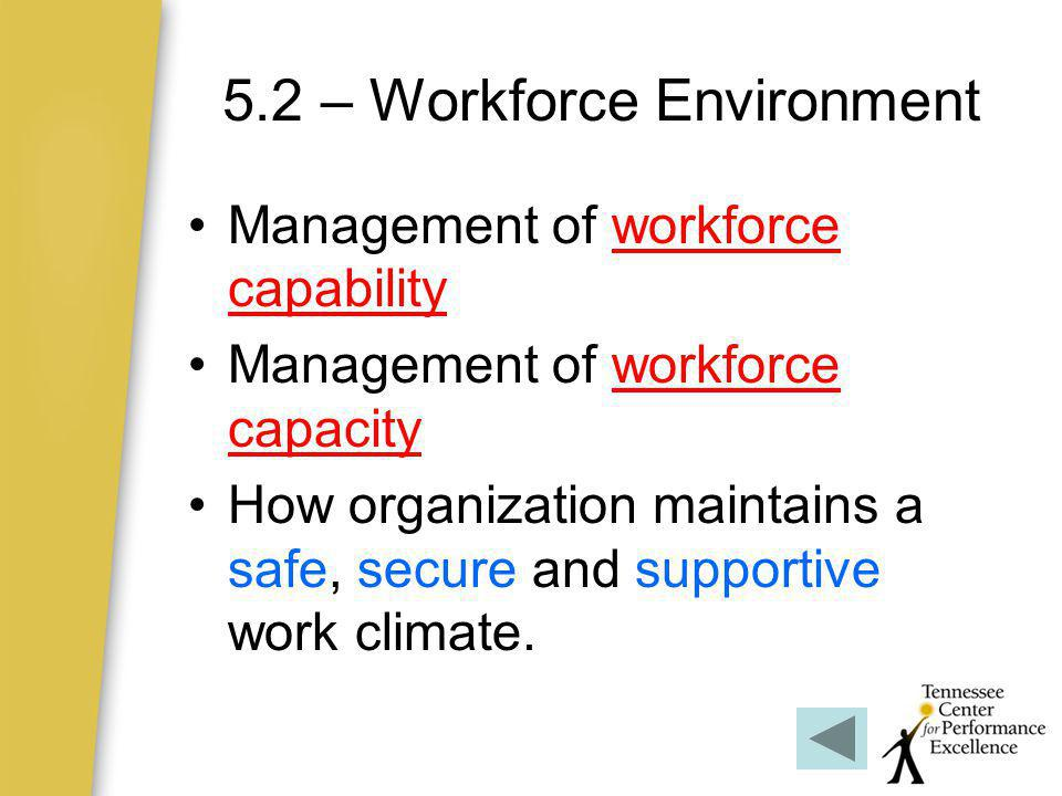 5.2 – Workforce Environment