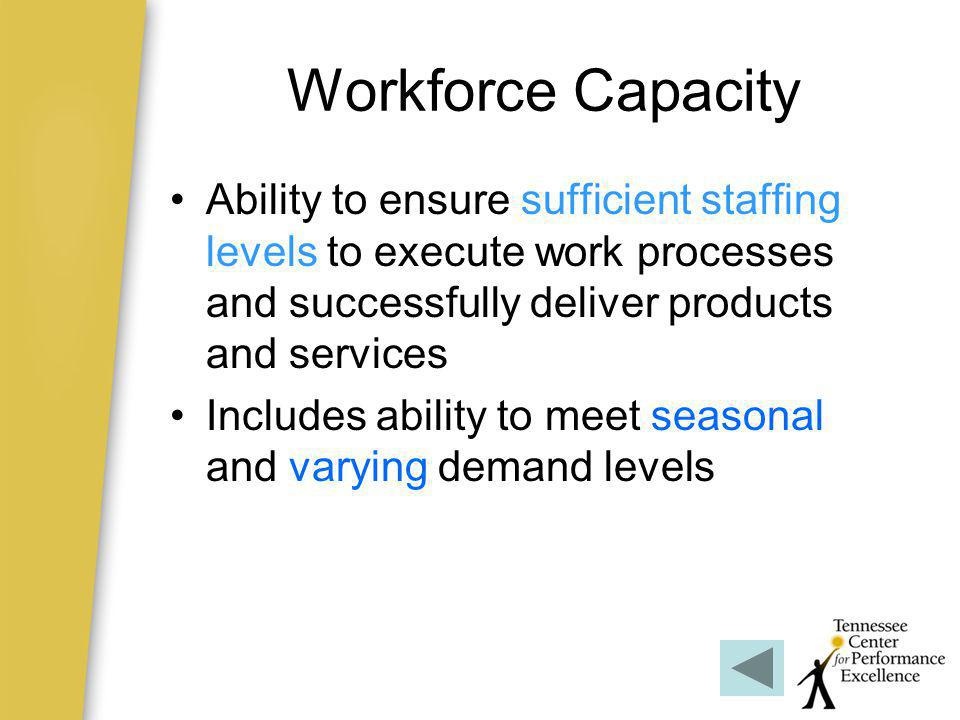 Workforce Capacity Ability to ensure sufficient staffing levels to execute work processes and successfully deliver products and services.