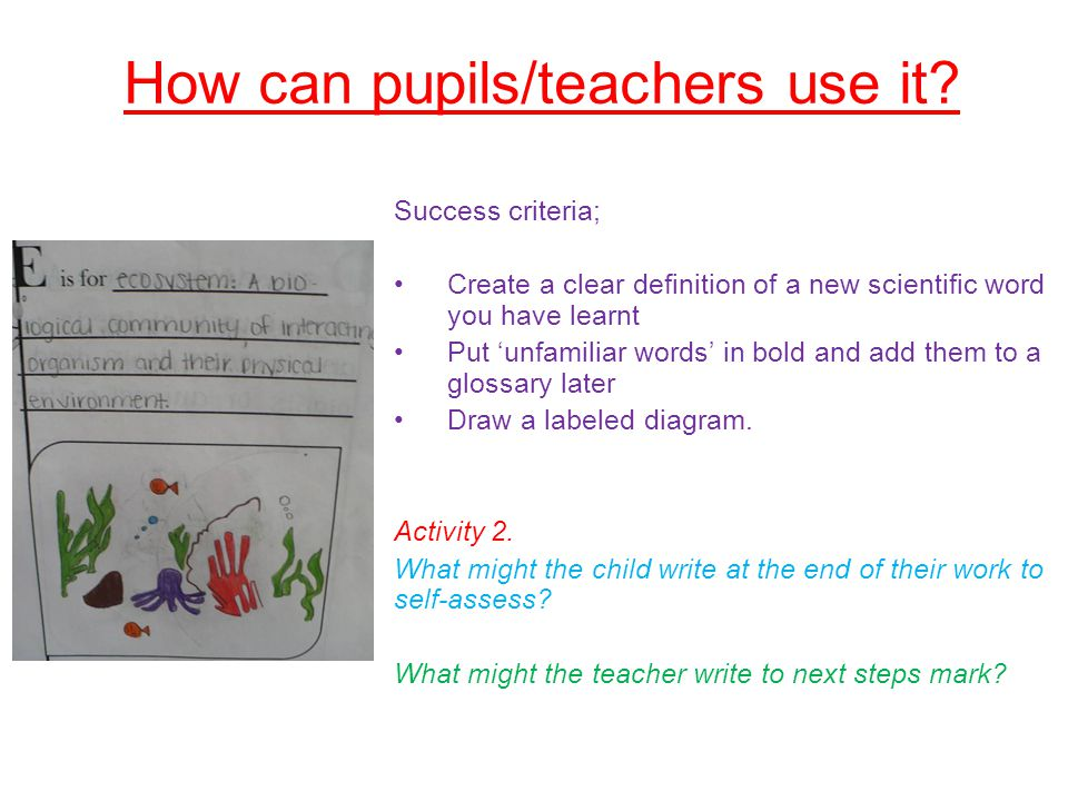 How can pupils/teachers use it