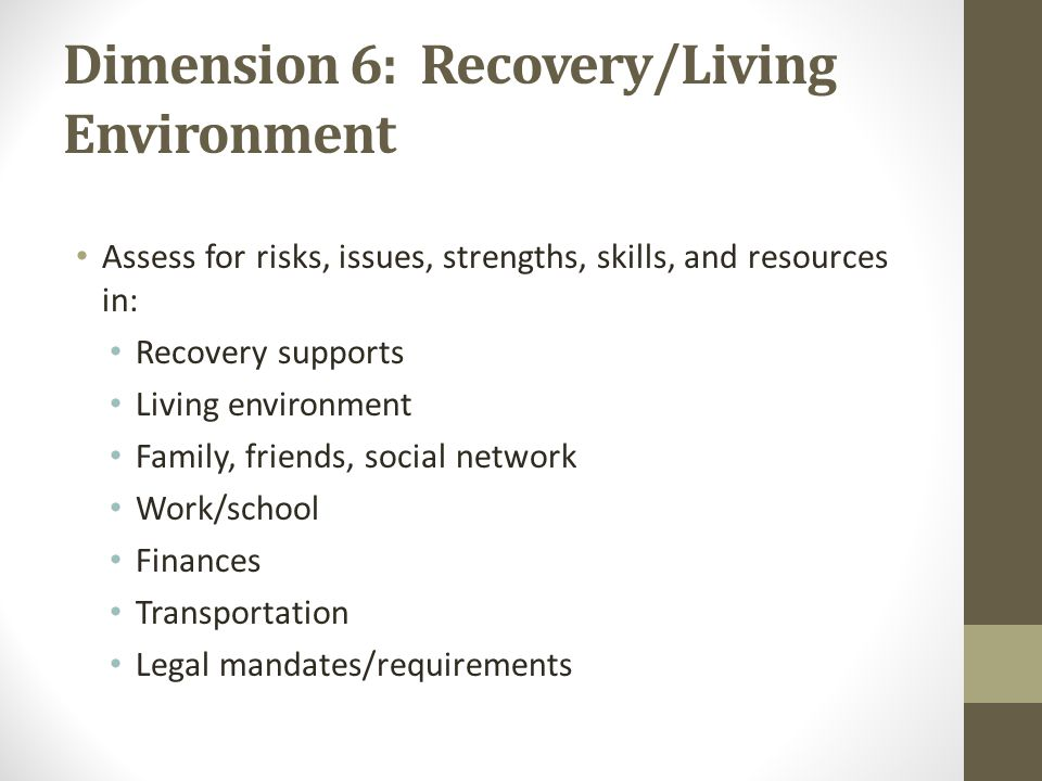 Dimension 6: Recovery/Living Environment