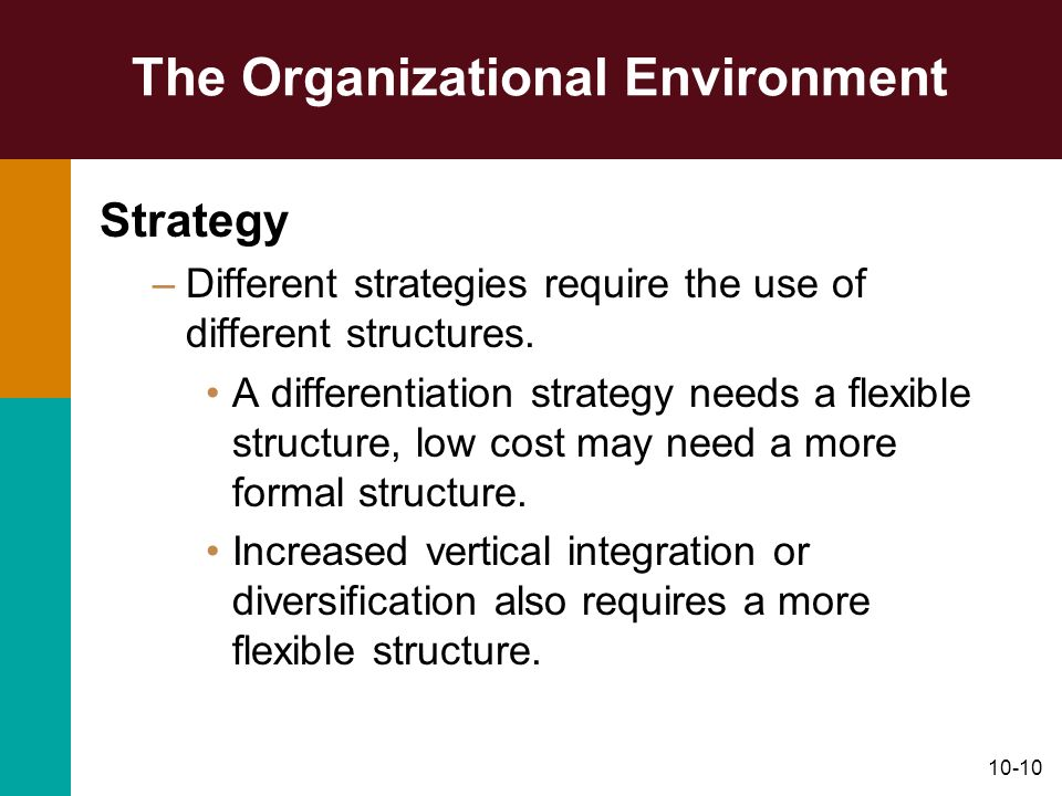 The Organizational Environment