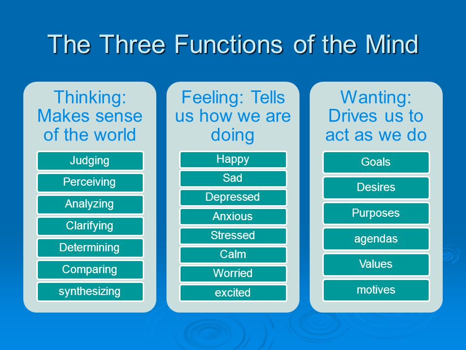 The Three Functions of the Mind
