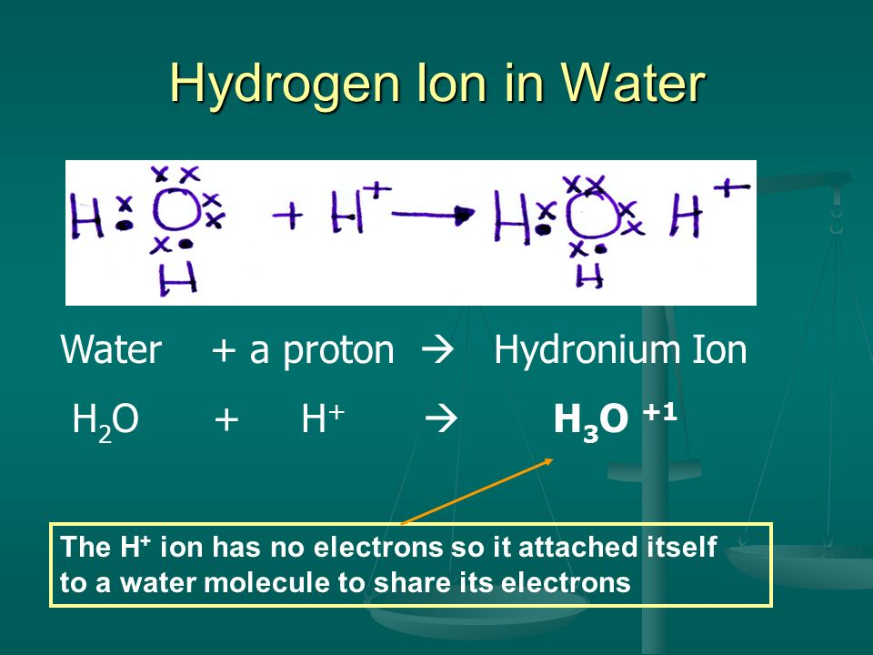 Hydrogen Ion in Water Water + a proton  Hydronium Ion