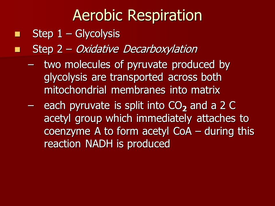 Aerobic Respiration Step 1 – Glycolysis