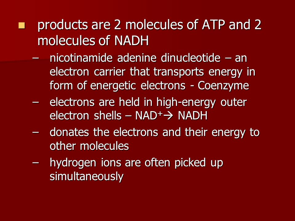 products are 2 molecules of ATP and 2 molecules of NADH