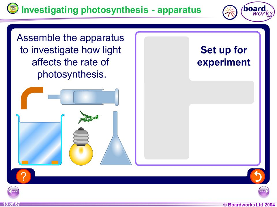Investigating photosynthesis - apparatus