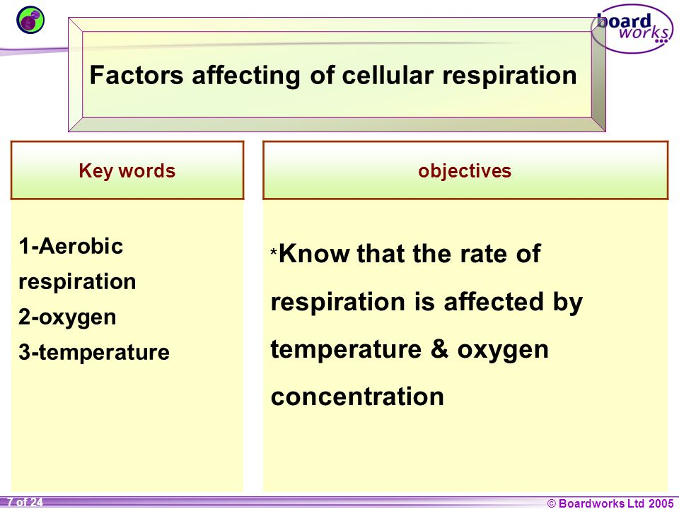 Factors affecting of cellular respiration