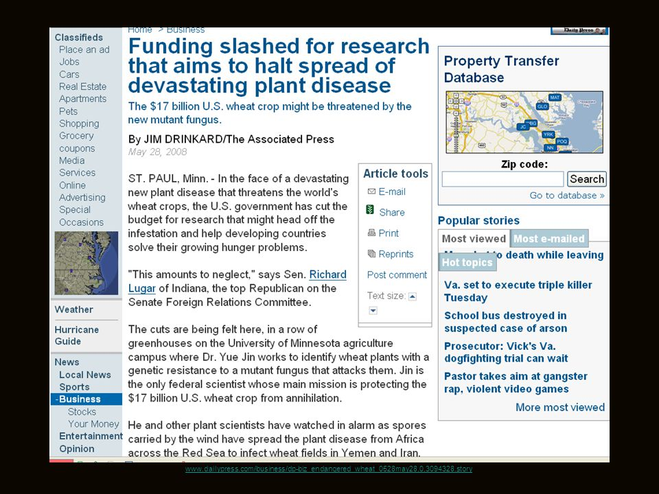 www.dailypress.com/business/dp-biz_endangered_wheat_0528may28,0,3094328.story 66