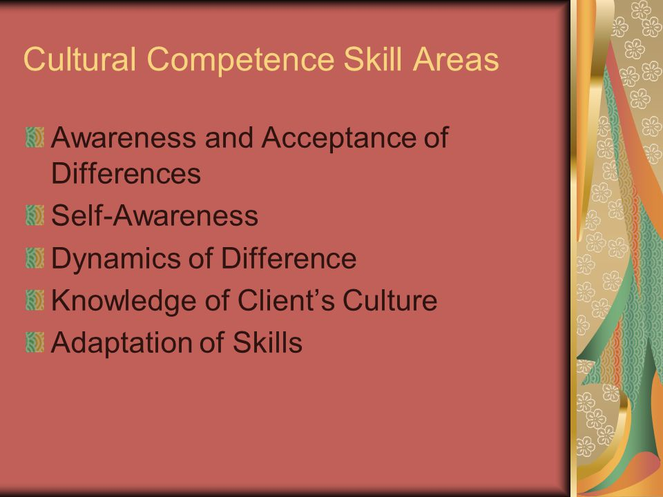 Cultural Competence Skill Areas