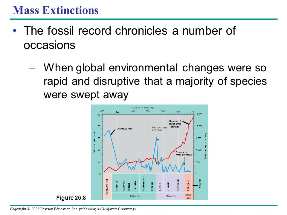 The fossil record chronicles a number of occasions