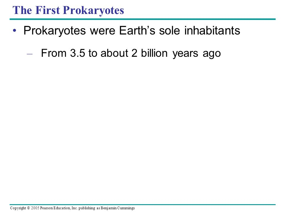Prokaryotes were Earth's sole inhabitants