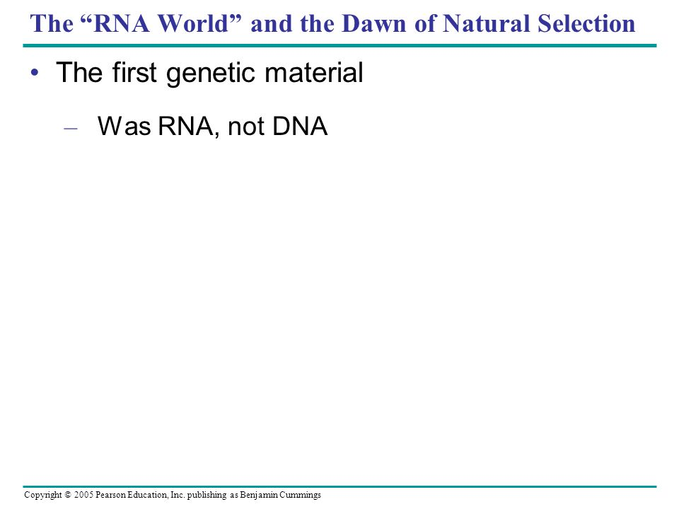 The RNA World and the Dawn of Natural Selection