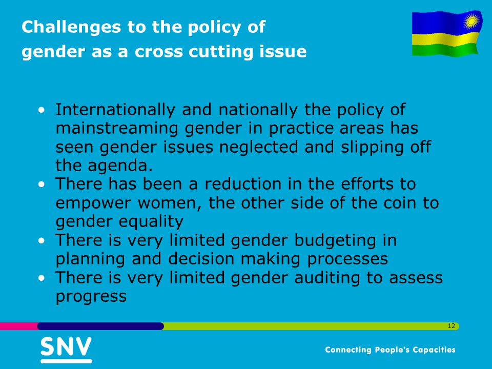Challenges to the policy of gender as a cross cutting issue