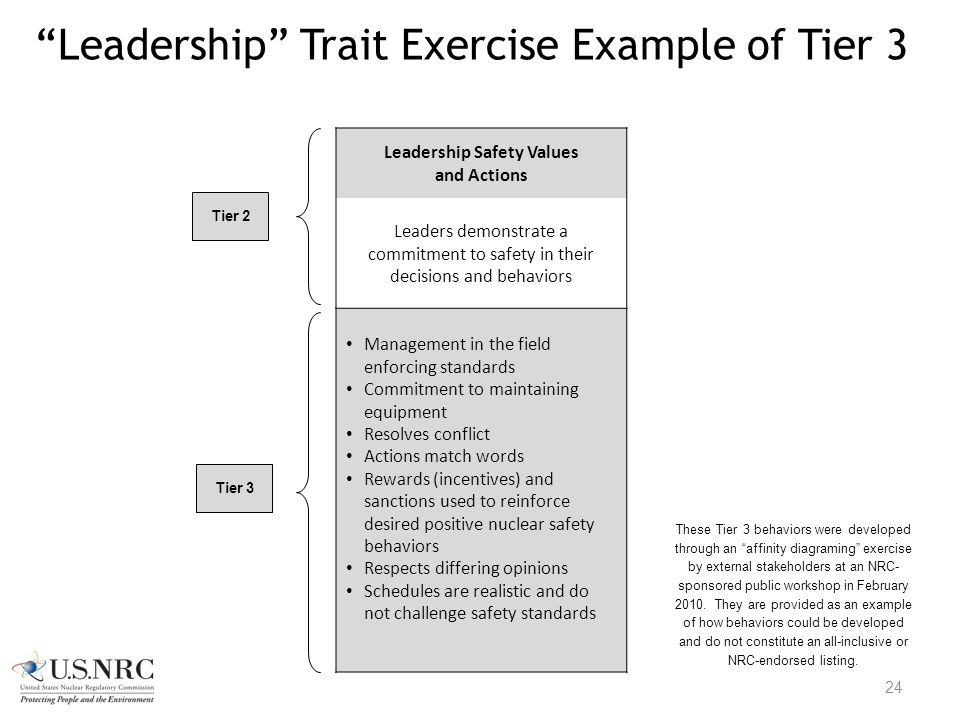 Leadership Trait Exercise Example of Tier 3