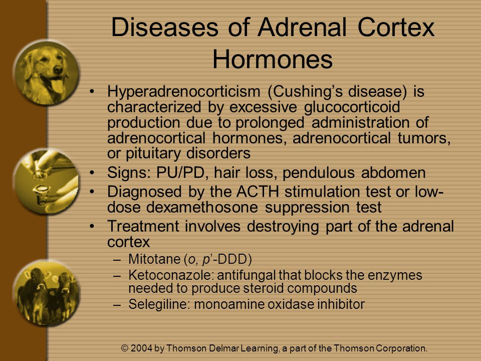 Diseases of Adrenal Cortex Hormones