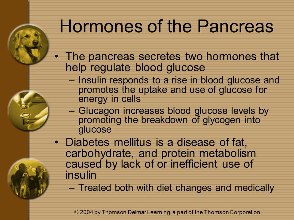 Hormones of the Pancreas