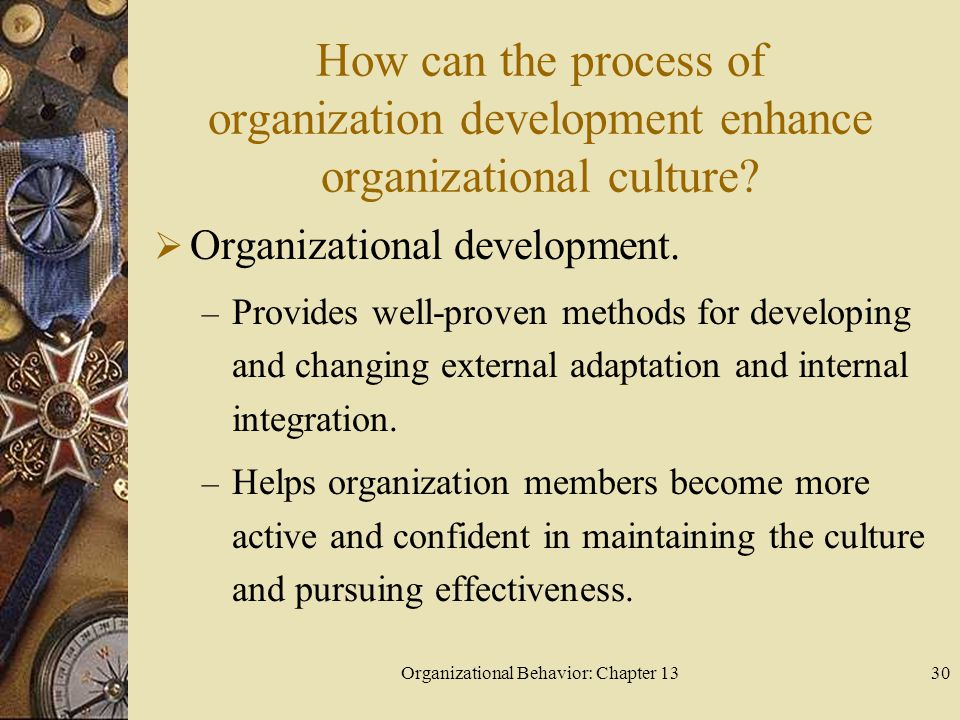 Organizational Behavior: Chapter 13