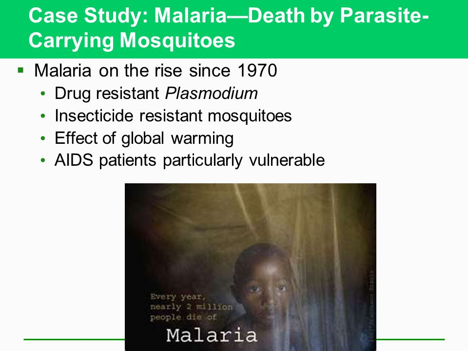 Case Study: Malaria—Death by Parasite-Carrying Mosquitoes