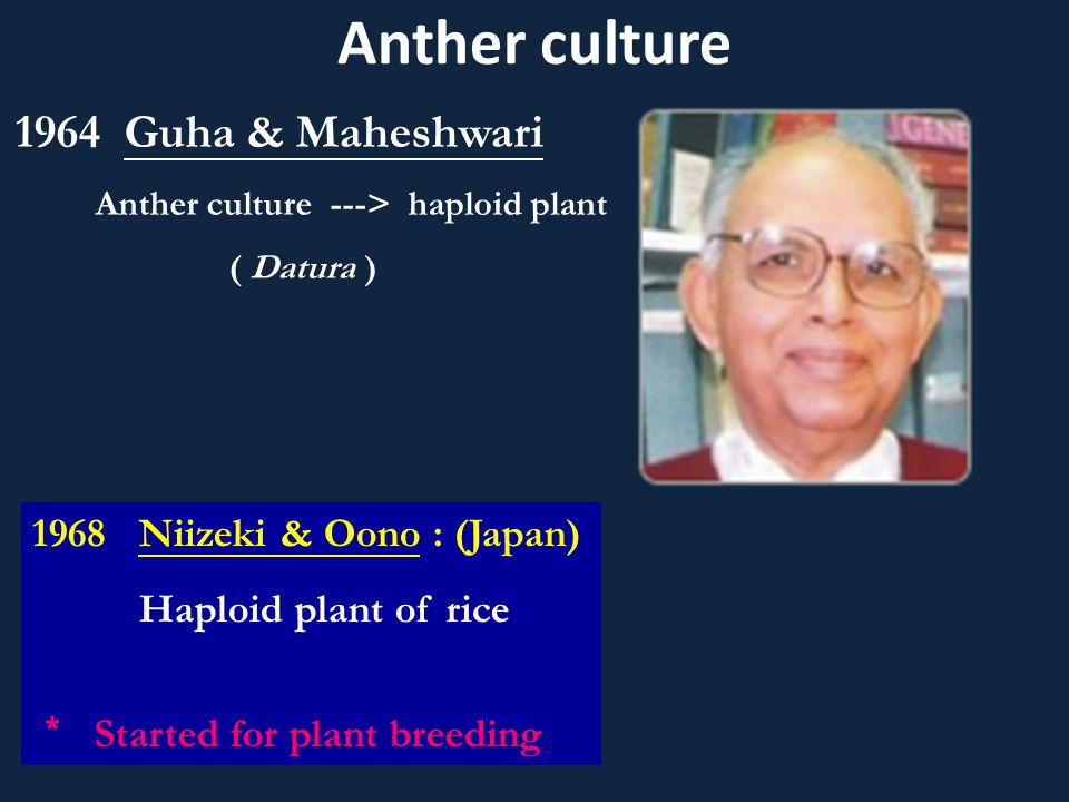 Anther culture Guha & Maheshwari Niizeki & Oono : (Japan)