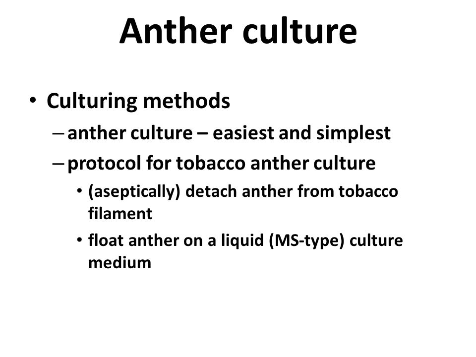 Anther culture Culturing methods anther culture – easiest and simplest
