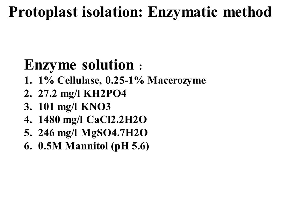 Protoplast isolation: Enzymatic method
