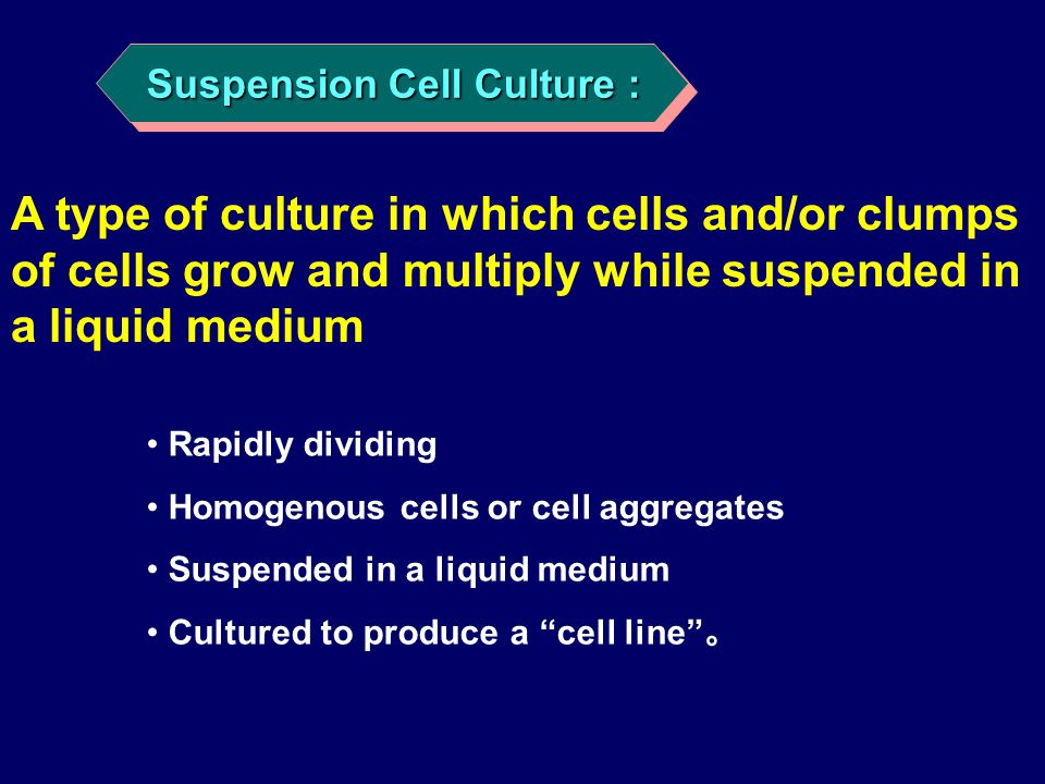 Suspension Cell Culture :