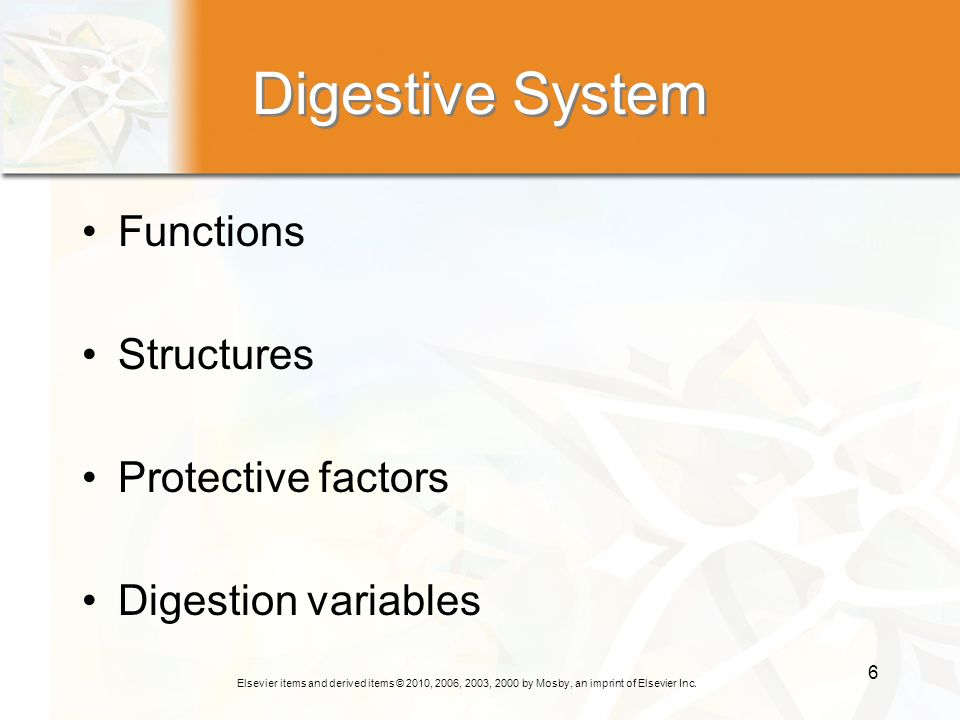 Digestive System Functions Structures Protective factors