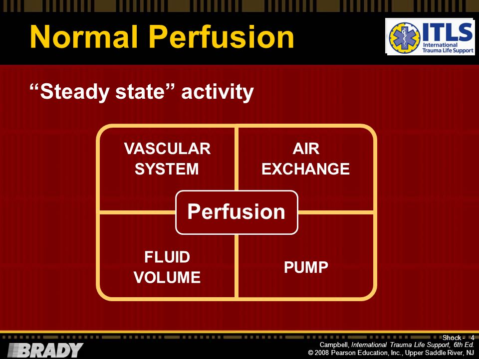 Normal Perfusion Perfusion Steady state activity