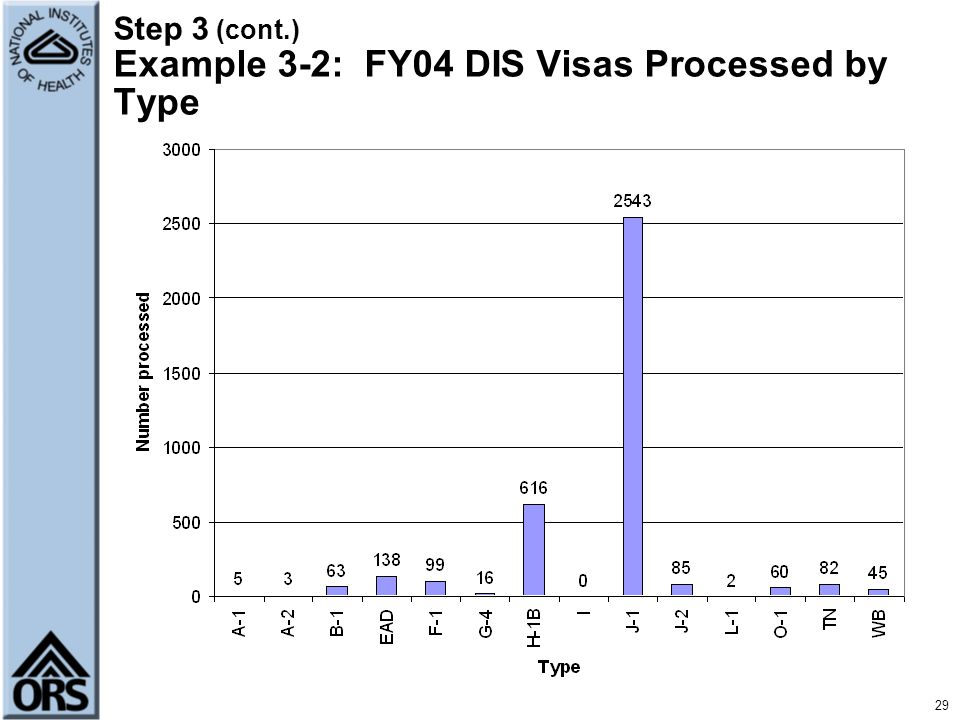 Step 3 (cont.) Example 3-2: FY04 DIS Visas Processed by Type