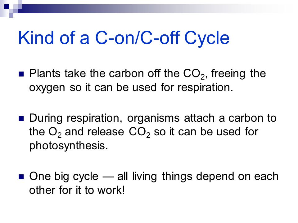 Kind of a C-on/C-off Cycle
