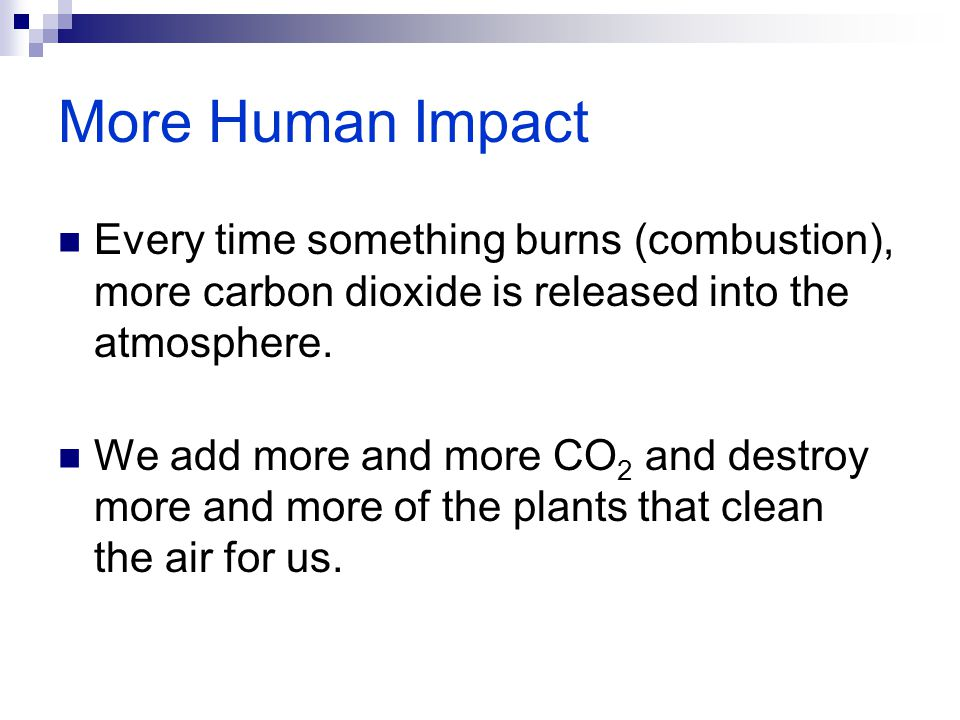 More Human Impact Every time something burns (combustion), more carbon dioxide is released into the atmosphere.
