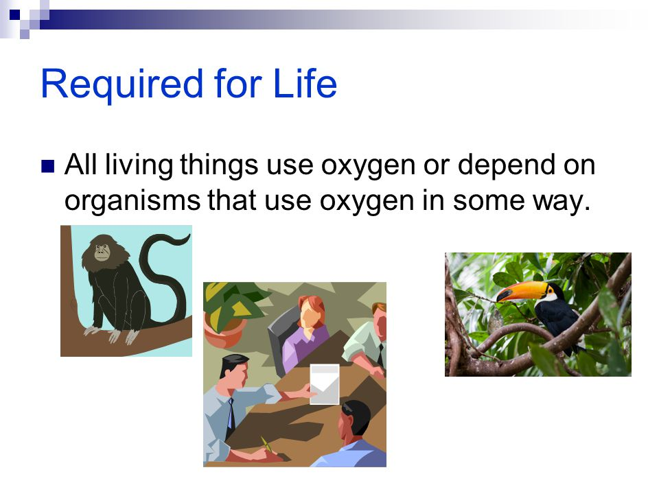 Required for Life All living things use oxygen or depend on organisms that use oxygen in some way.