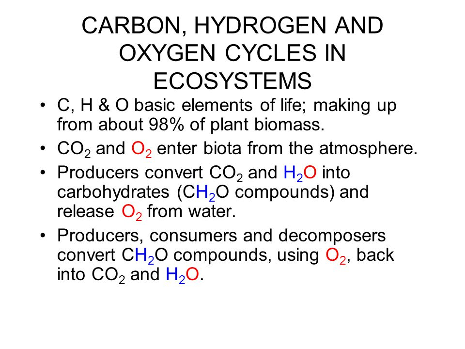 CARBON, HYDROGEN AND OXYGEN CYCLES IN ECOSYSTEMS