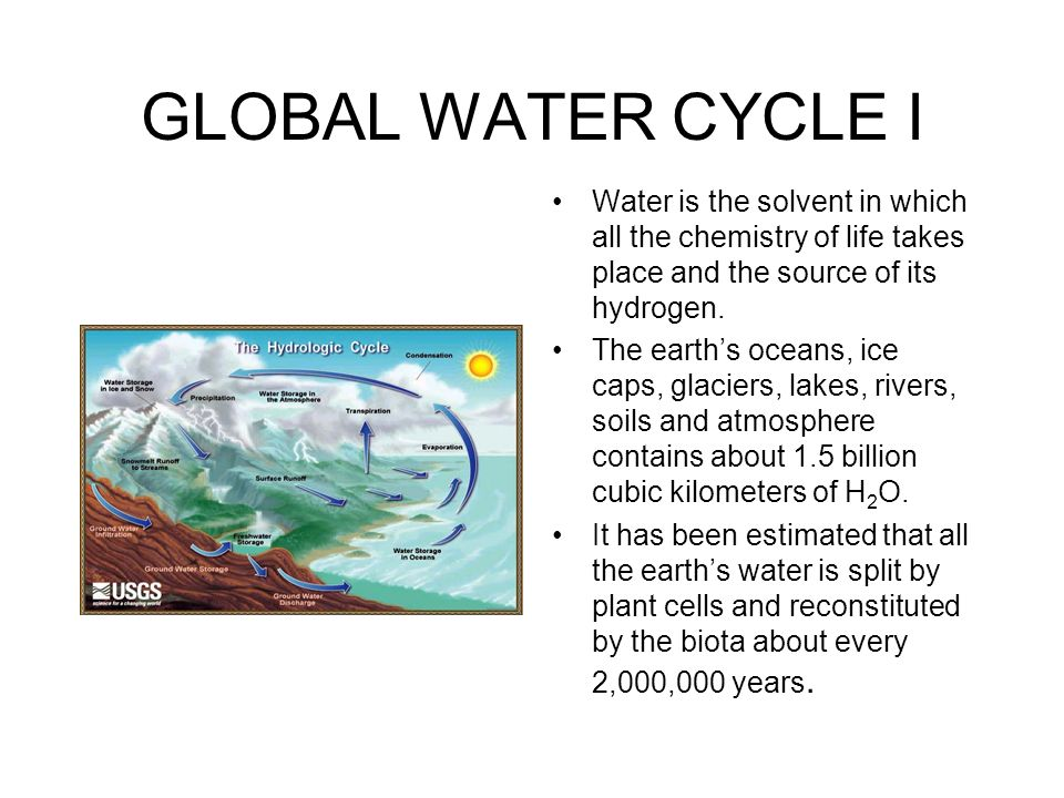 GLOBAL WATER CYCLE I Water is the solvent in which all the chemistry of life takes place and the source of its hydrogen.