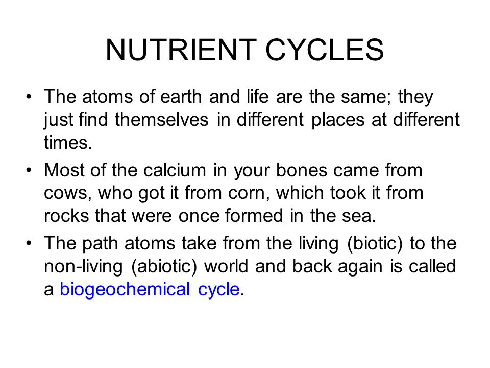 NUTRIENT CYCLES The atoms of earth and life are the same; they just find themselves in different places at different times.